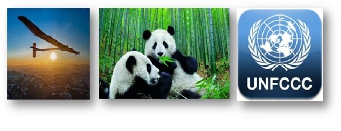 panda-banner