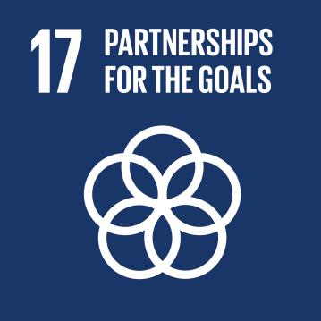 E_SDG-goals_Goal-17