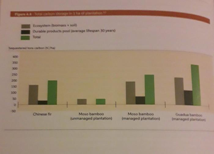 carbon per hectare