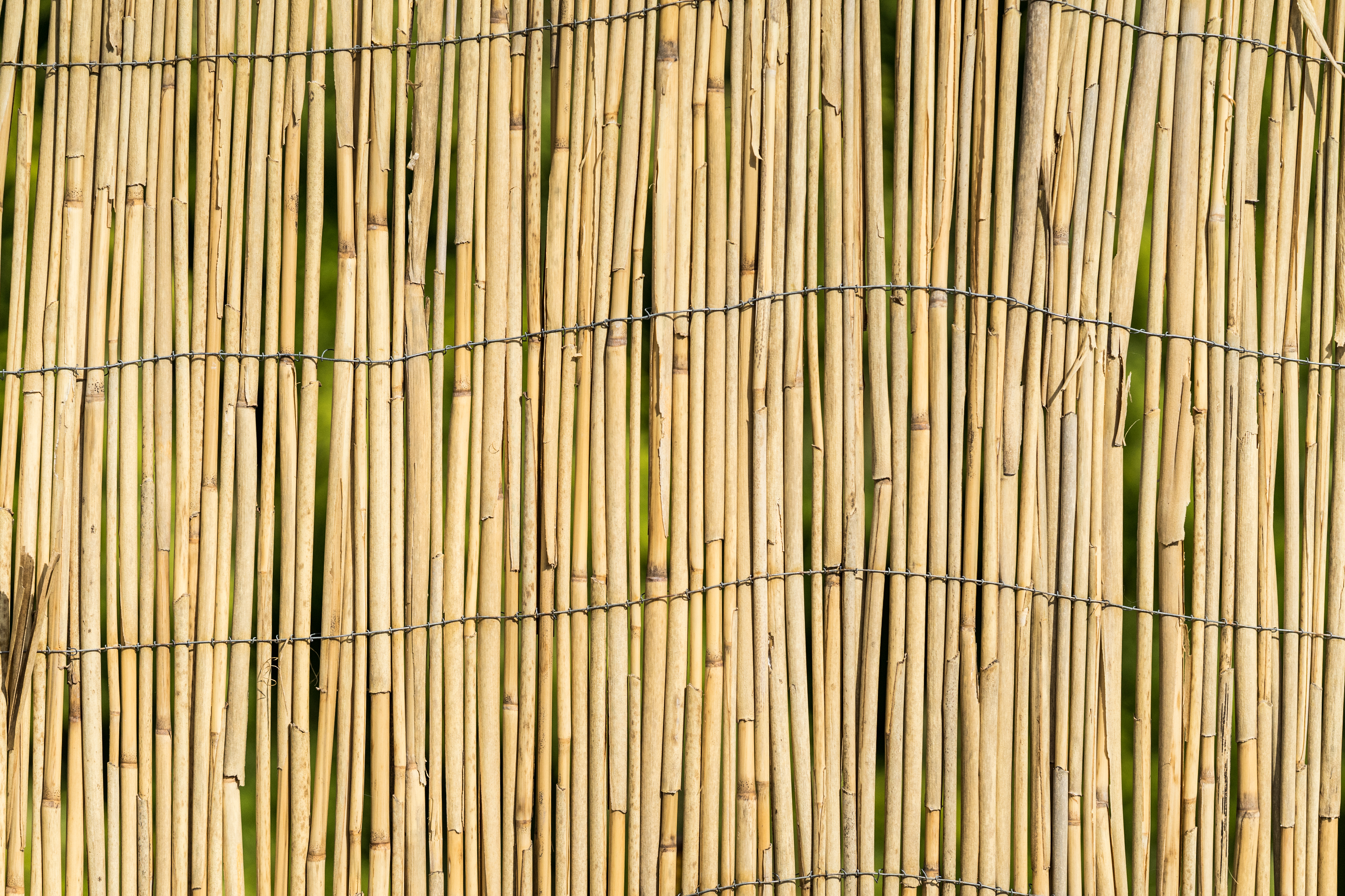 garden-bamboo-wall-fence-texture-background-picjumbo-com